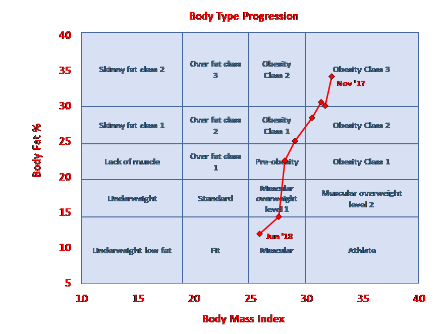 Body composition progression