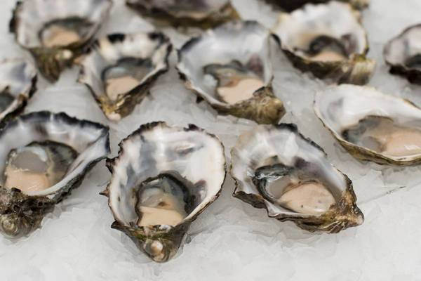 Oysters are stuffed with zinc!