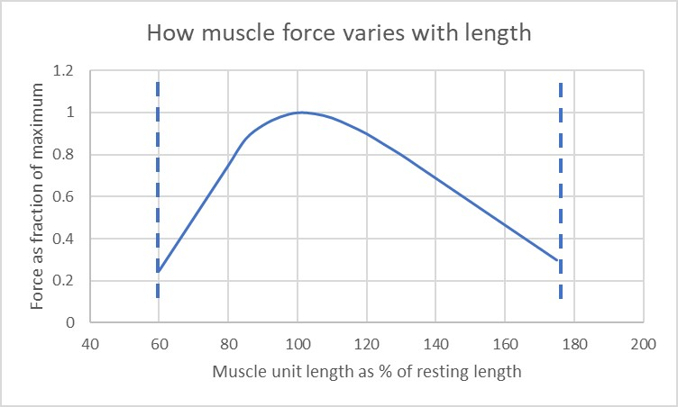 Force length relationship in musculotendinous unit, showing peak force at middle of range. The most effective biceps exercise will maximise force at the mid range of the movement where the muscle is able to generate the most force