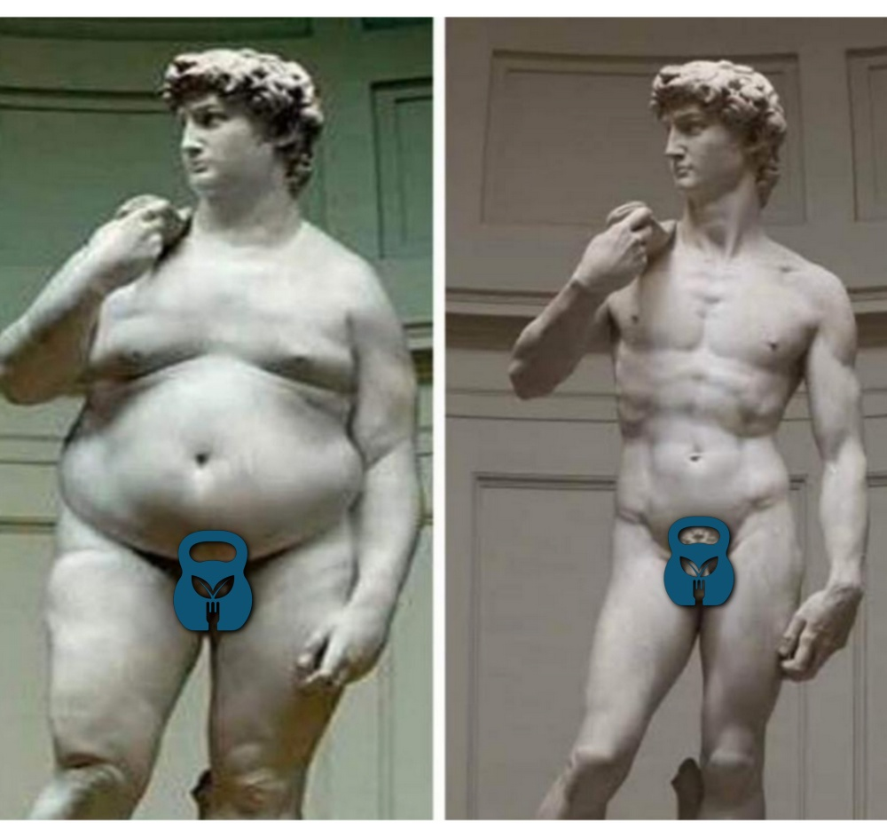 A statue in two stares, showing body composition