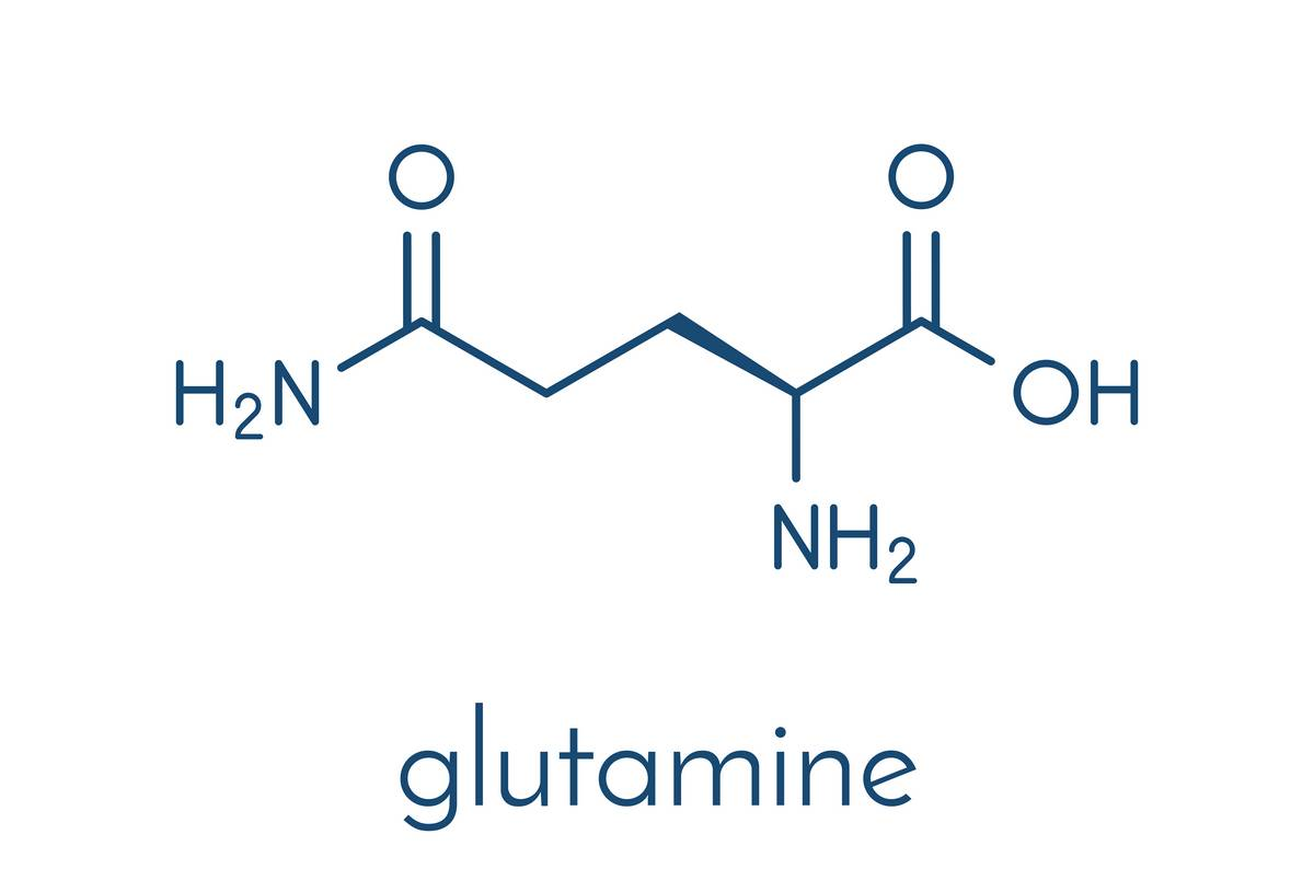 Structure of Glutamine. Maintaining glutamine is one of ten reasons why you need muscle